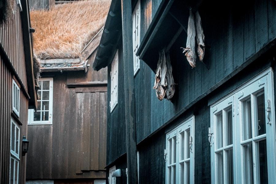 Raest Isole Faroe - Faroe Islands Food