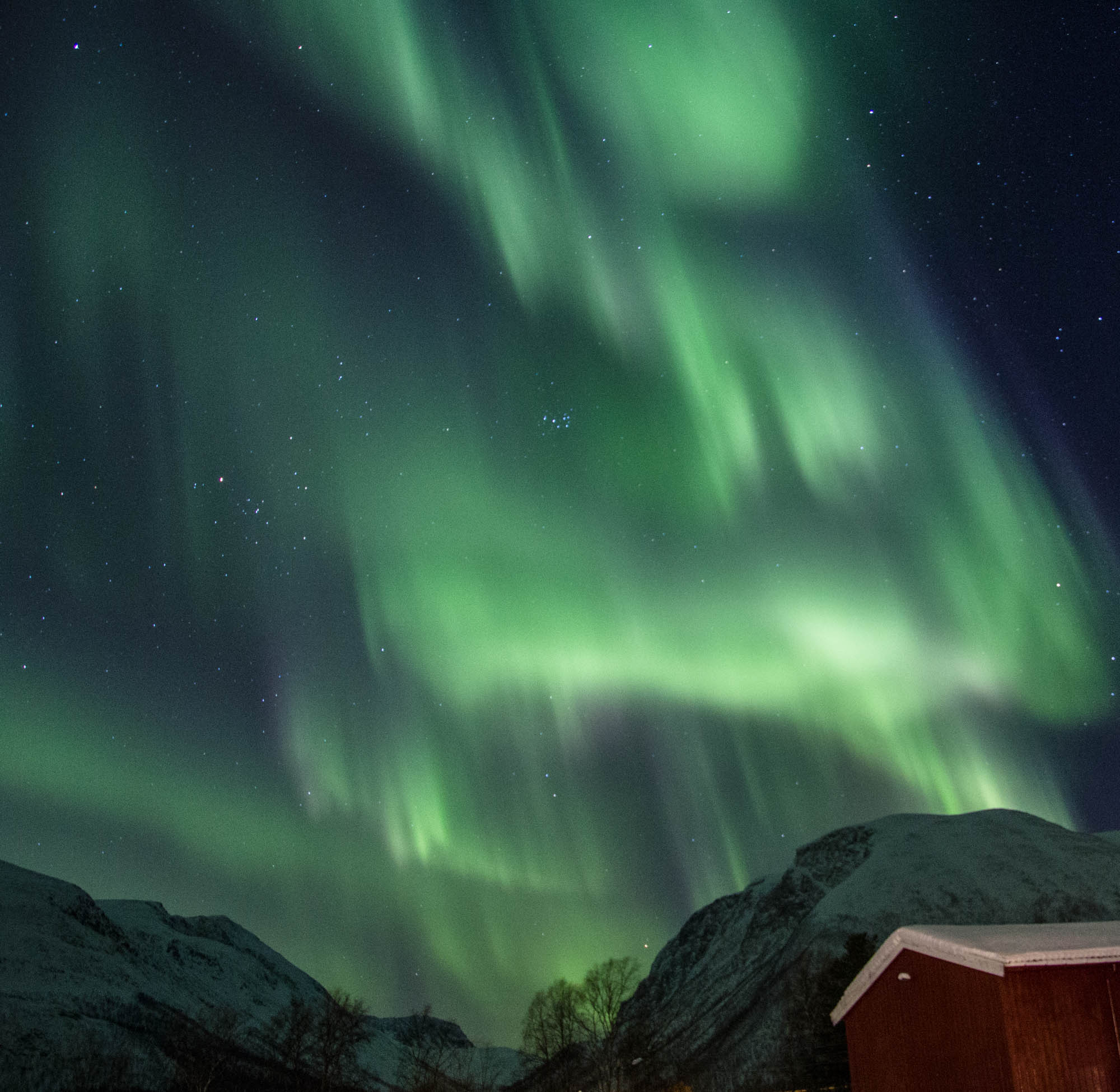 Northern Lights Norway Tromso Alta